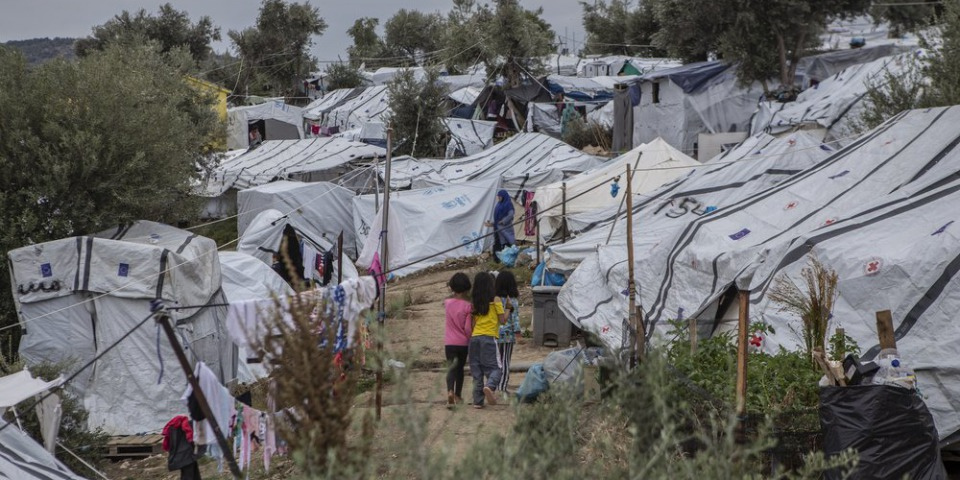 莫里亞難民營正式營區旁的橄欖樹林一景。©Anna Pantelia / MSF